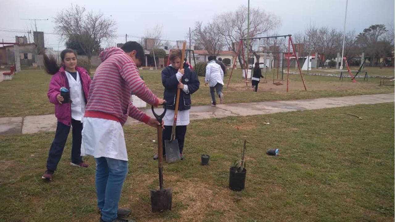 Plantación de árboles en la Plaza General Manuel Belgrano